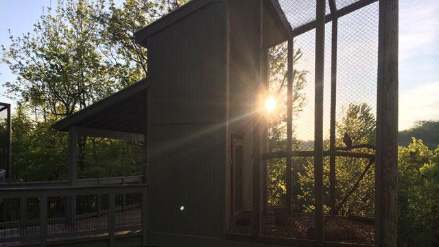 The Barbara J. Mapp Aviary Education Center at Radnor Lake_45543