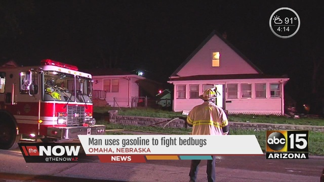 bed bug fire_43472