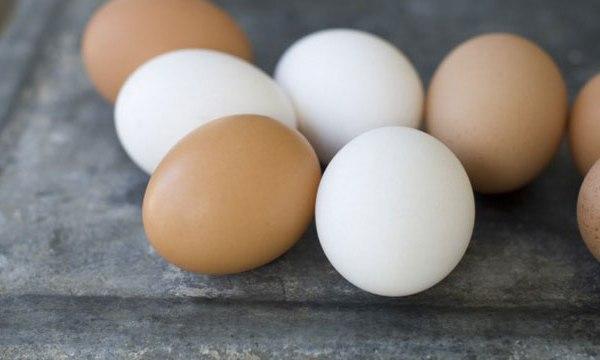 Eggs_60303