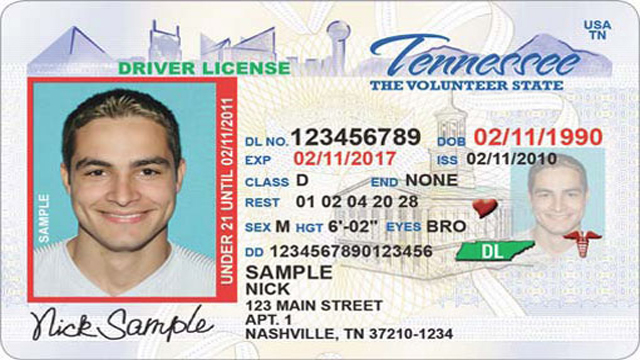 Tennessee driver's license generic_248583