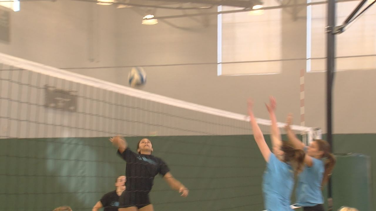 Alliance volleyball_255744