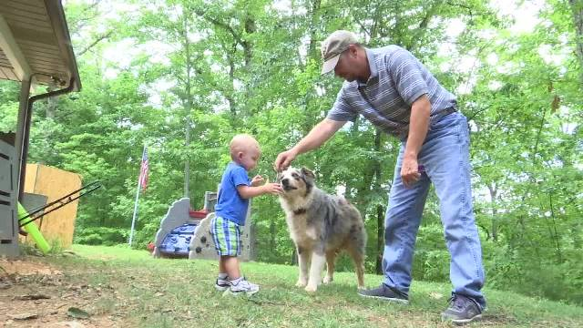 Shiloh saves toddler_309424