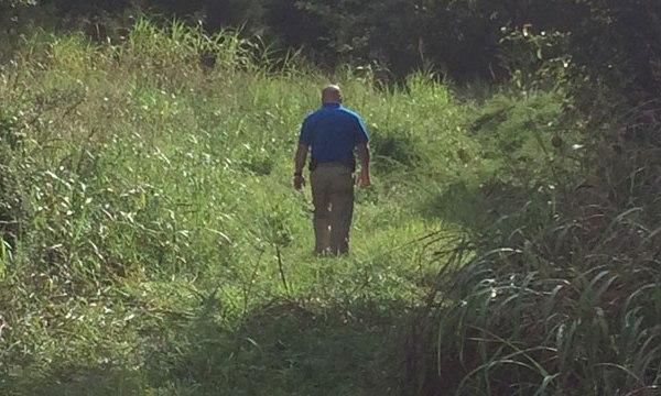 williamson county homicide investigation_311370