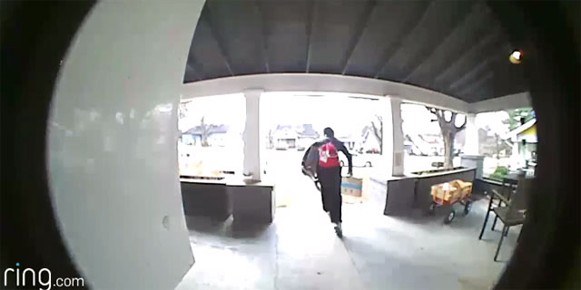 package theft_343105