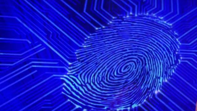 fingerprint_354023