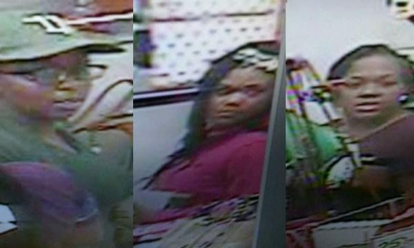 Franklin; Cool Springs Belk theft suspects_358012