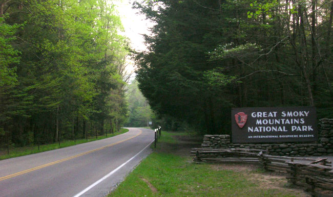 Great Smoky Mountains National Park_314550