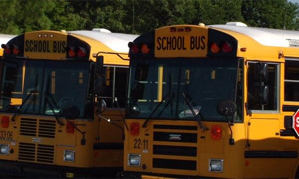 Generic Robertson County School Bus_428710