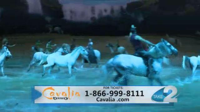 Cavalia_440266