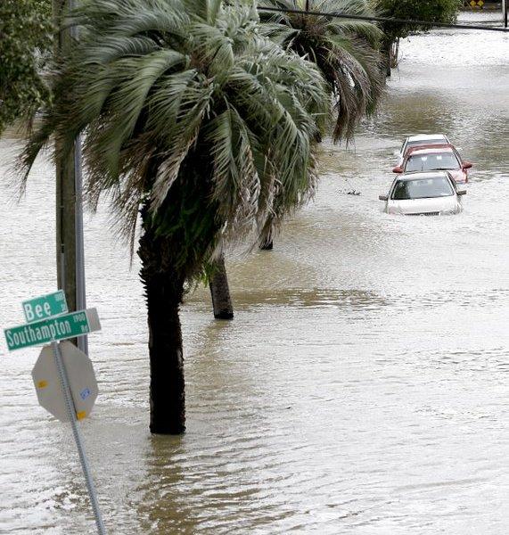 hurricane irma_442977