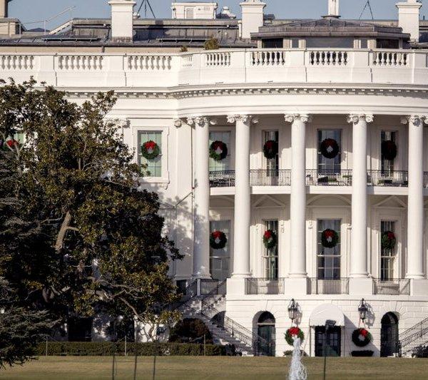 White House tree_471975