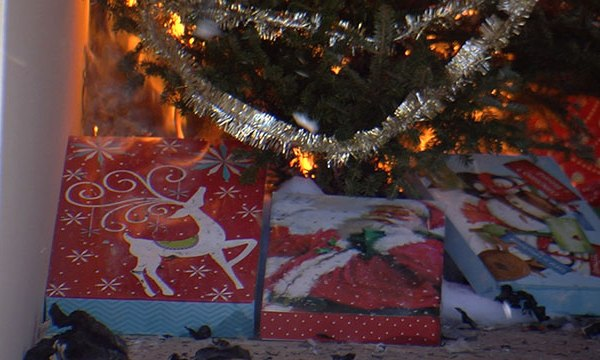 Christmas tree fire demonstration_468918