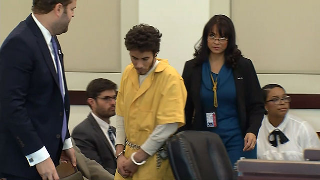 Man Accused In Violent Rape Of Nanny In Nashville Park Pleads Guilty