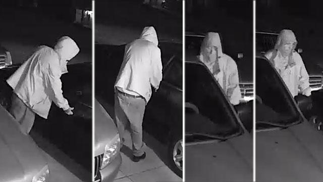 Mt. Juliet car burglary thief_483735