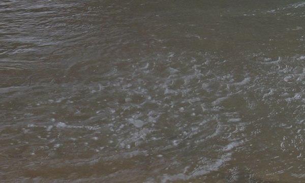 Hickman water_488989