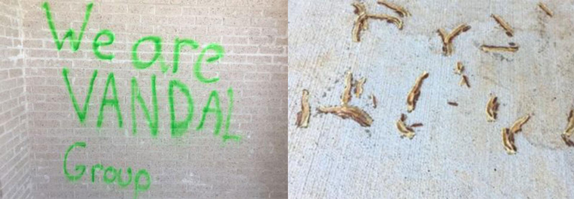 RUCO-mosque-vandalism_1525910754296.jpg
