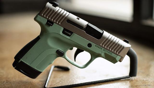 Honor Defense gun1_1529863734336.jpg.jpg