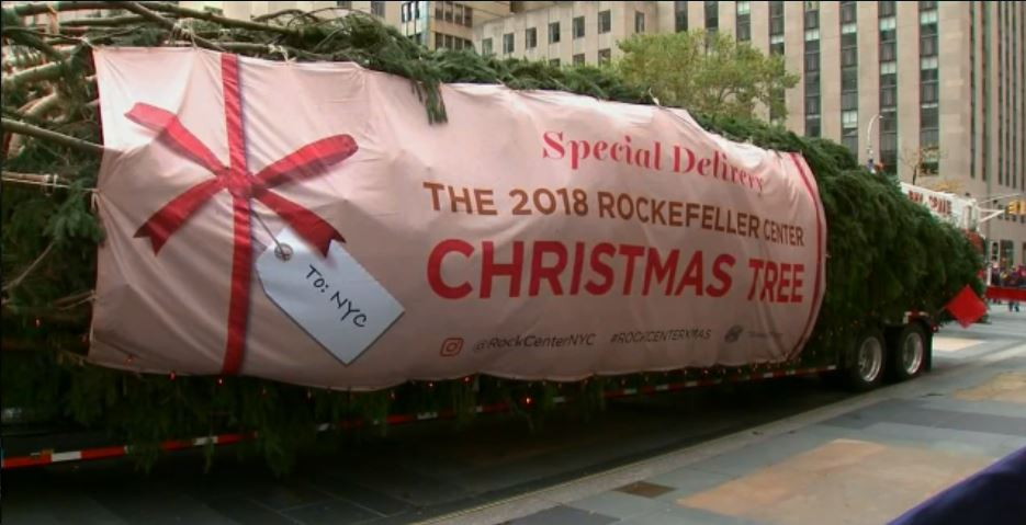 2018 Rockefeller Christmas Tree arrives_1541868622560.JPG.jpg