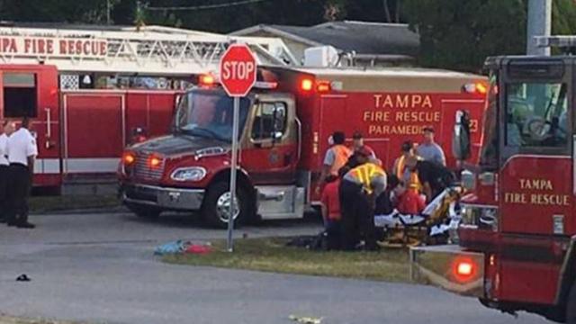 kids hit in Tampa