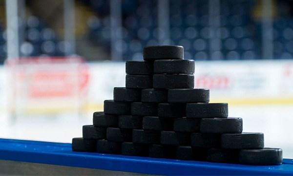 hockey pucks generic