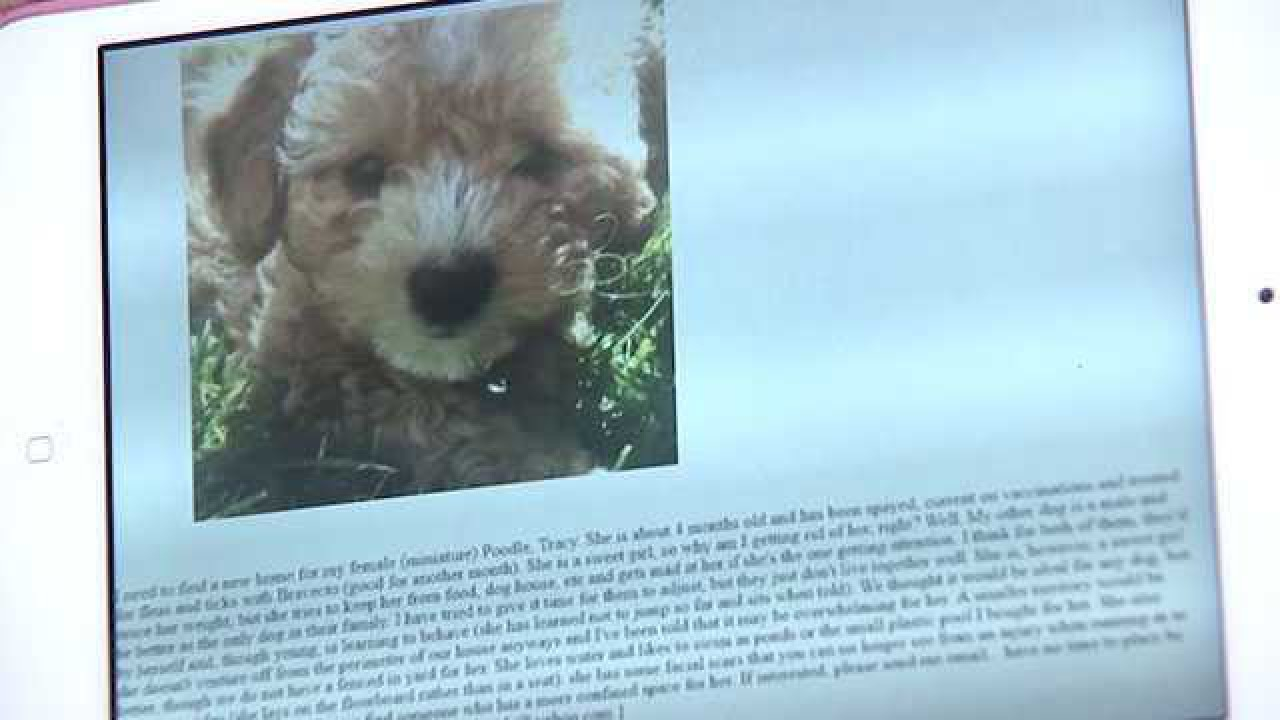 Clarksville Woman Who Fell For Pet Scam Shares Her Story As