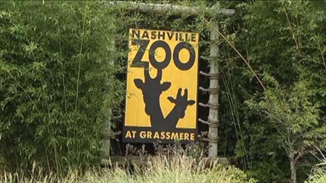 Nashville Zoo_434548