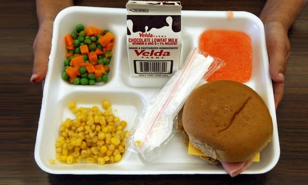 school lunch generic