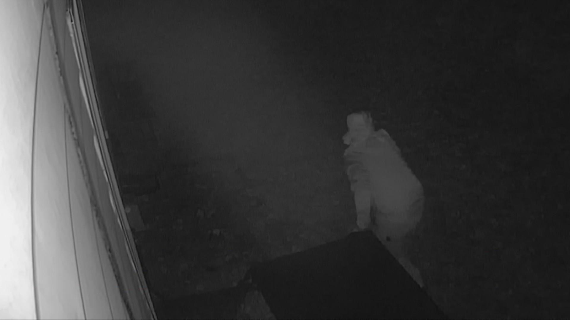 Creepy_peeping_tom_in_s__Nashville_0_20190109002537