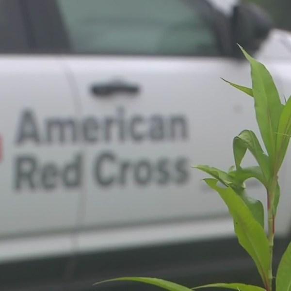 american red cross generic_298417