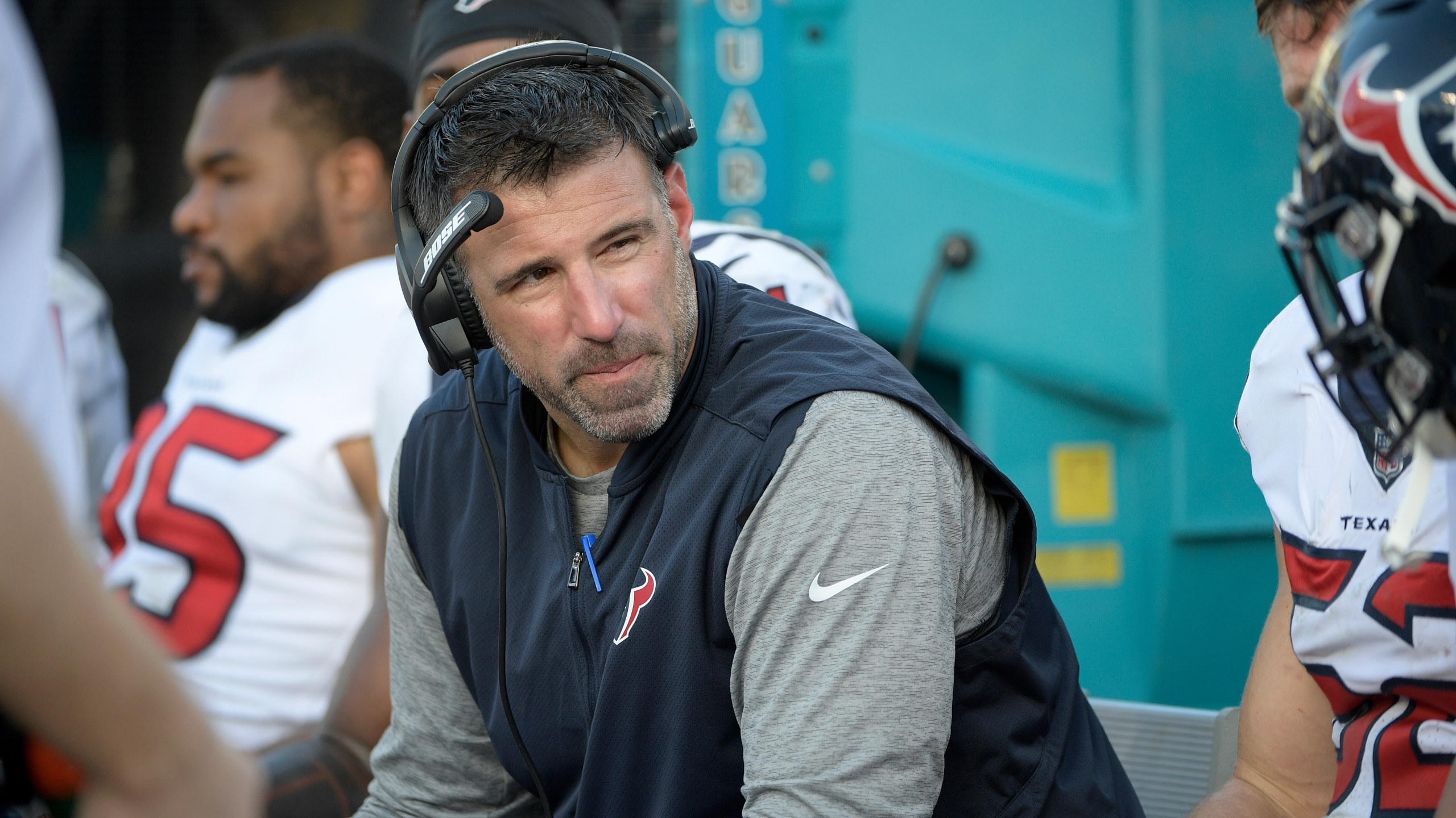 Mike Vrabel_477972