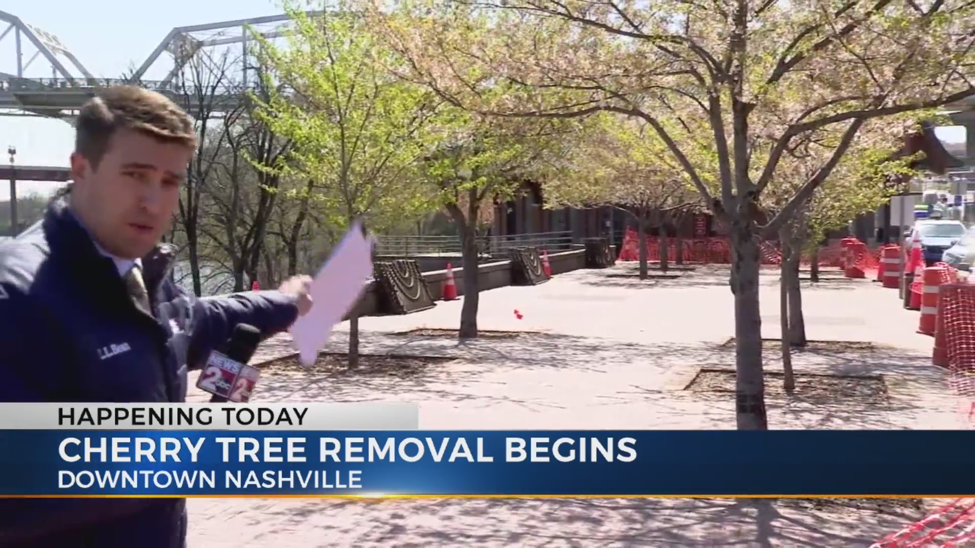 Cherry_Tree_removal_update_0_20190402212850