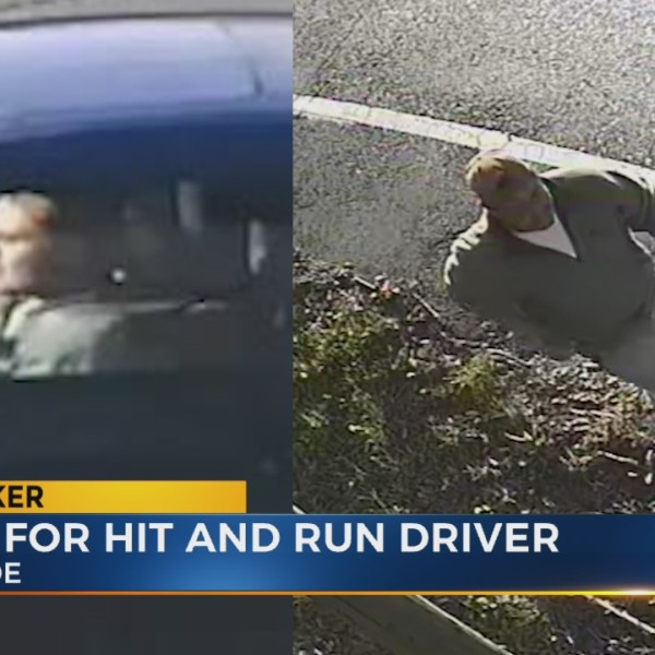 Police looking for hit and run driver who ran from scene
