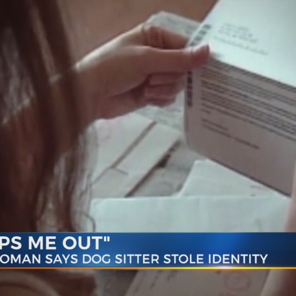 Franklin woman claims dog sitter stole from her while she was in Paris
