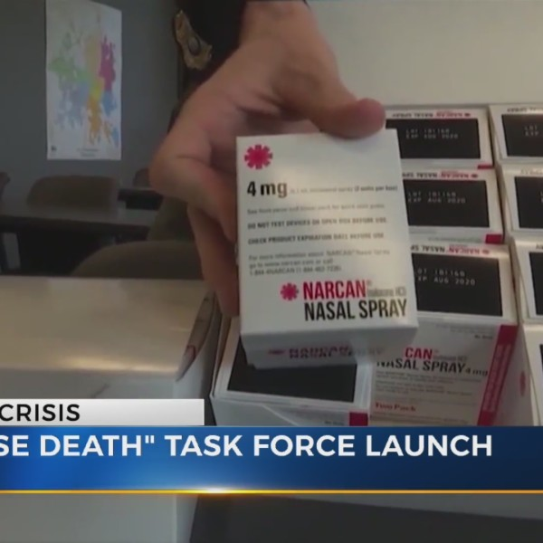 TBI task force overdoses