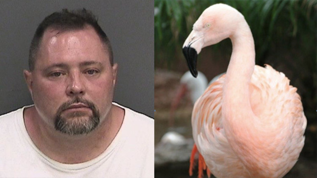 Joseph Corrao and Pinky the flamingo