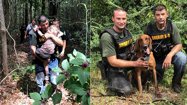 Florida boy with autism found by bloodhounds