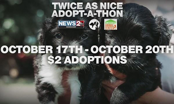 October adopt-a-thon