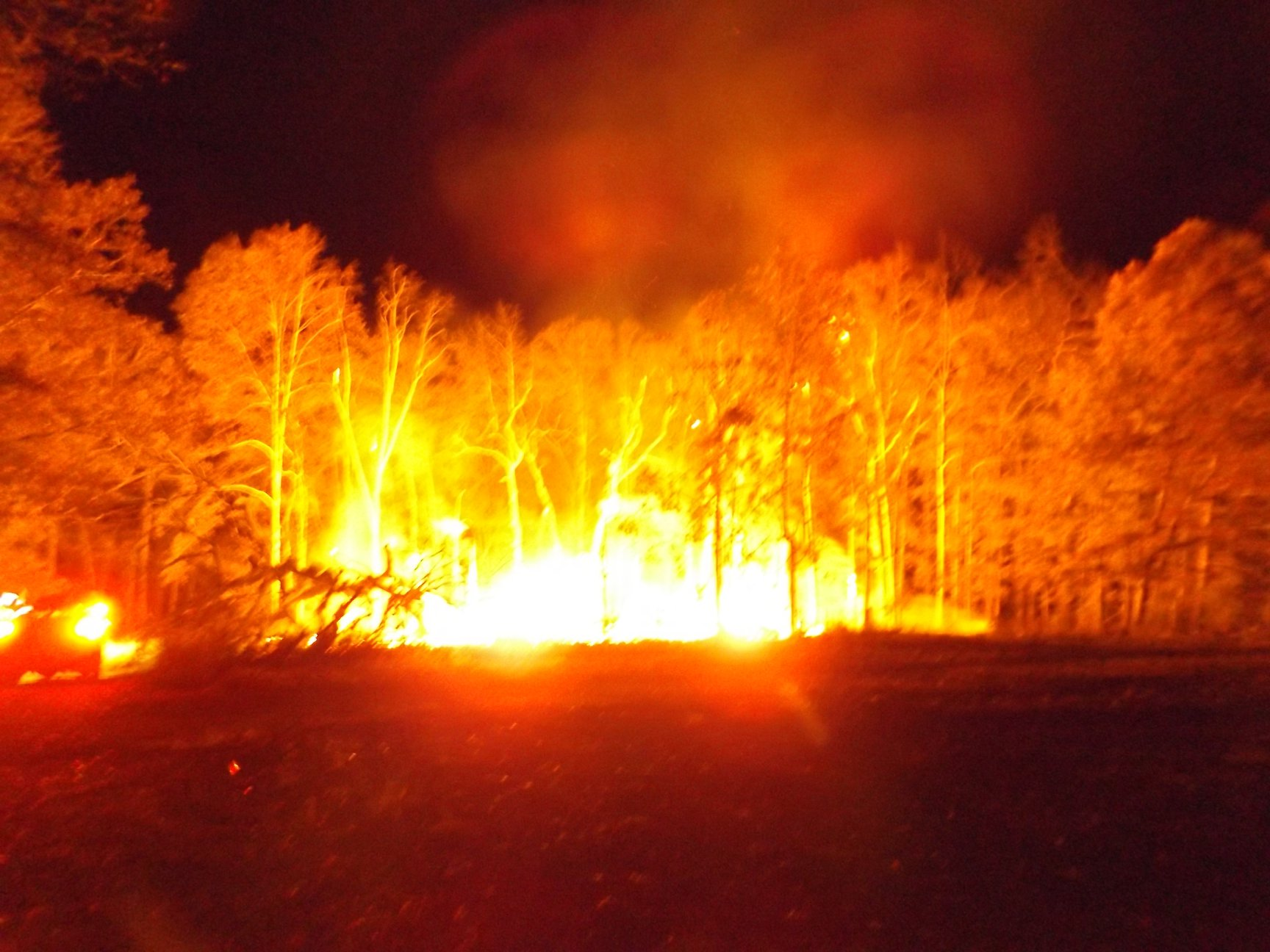 Picture of: World S Largest Treehouse Burns Down In Crossville Wkrn News 2