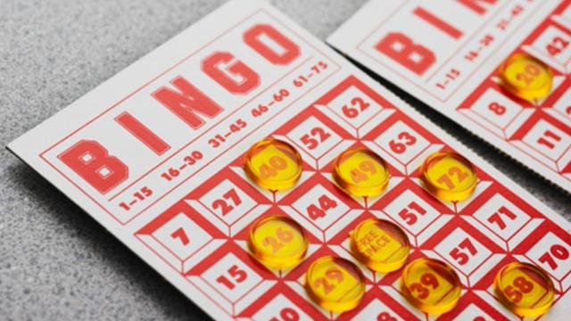 Bingo generic