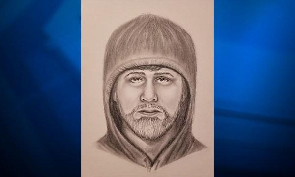 Williamson County suspect