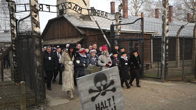 Auschwitz 75