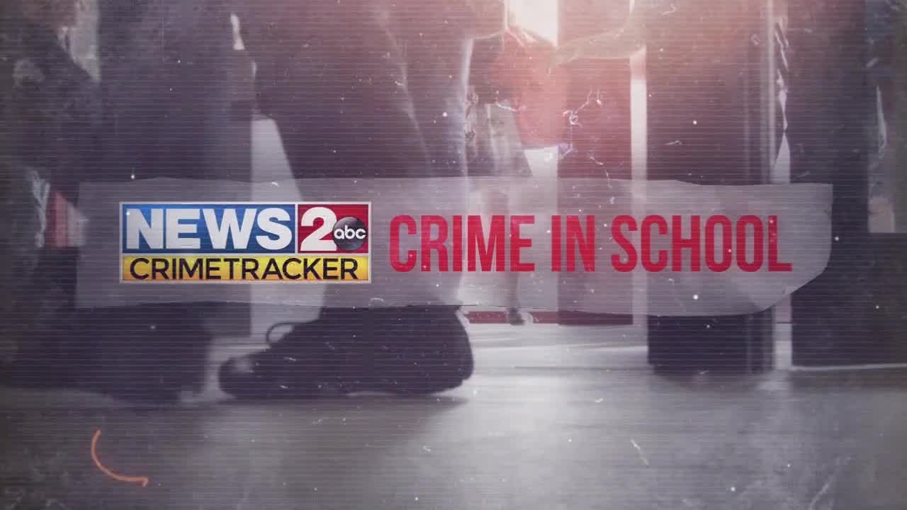 Crime in School