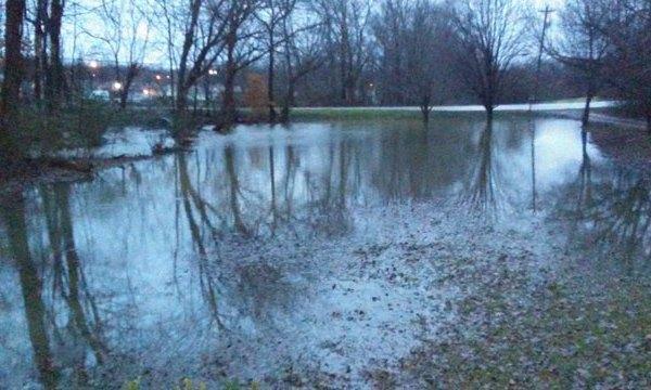 Dickson flooding
