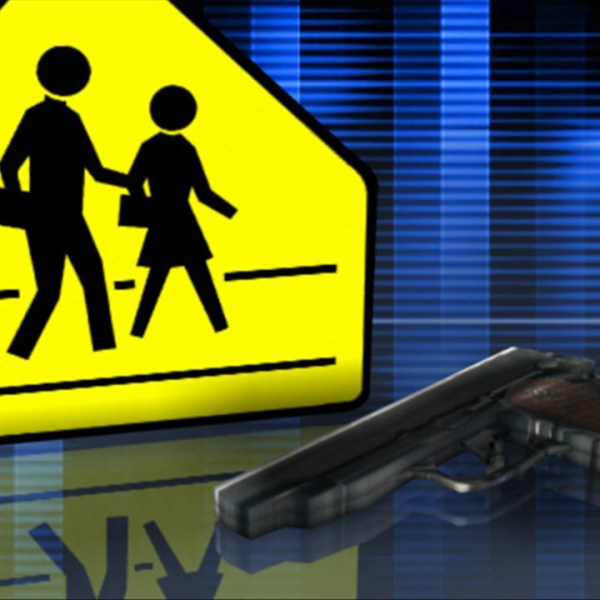 Gun in School Generic