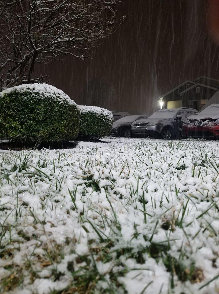 Murfreesboro (Courtesy: Tania Lynn Miller)