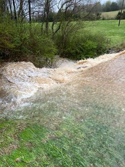 alishatatumdickey-linville-flooding