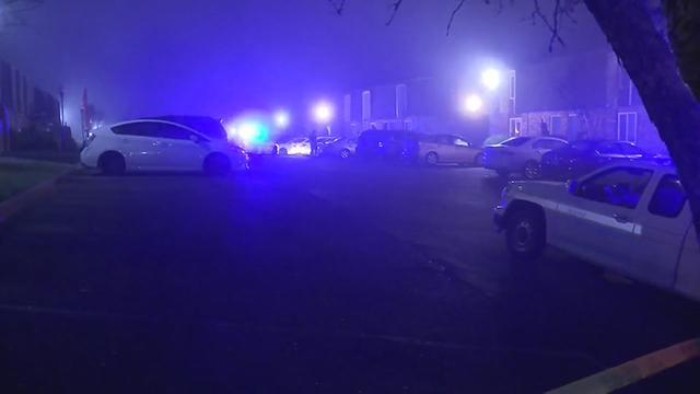 Hicks Road shooting