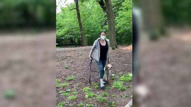 Viral Central Park dog