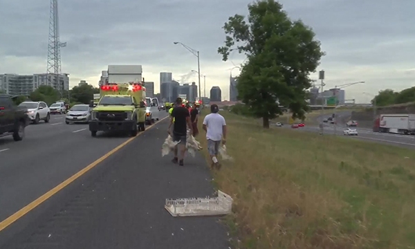 I-65 chicken crash