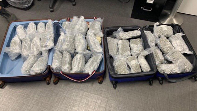 42 pounds of marijuana at BNA